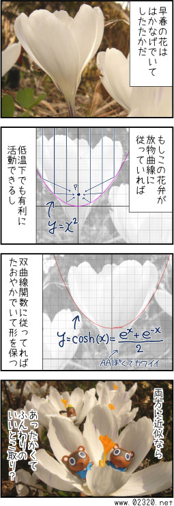∫f(x)dx = クロッカス?