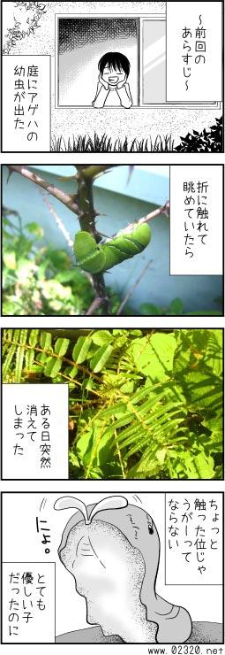 カラスザンショウにつくアゲハの幼虫