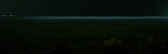 鎌倉に夜光虫
