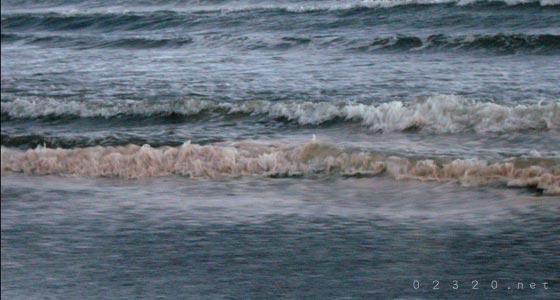 江ノ島周辺に赤潮出てた