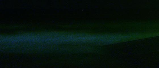 鎌倉に赤潮発生!夜光虫を見に行ったよ!