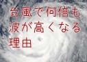 危険!台風のとき海で高波が起きる理由とメカニズム