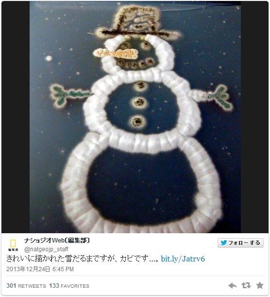 きれいに描かれた雪だるまですが、カビです…。:ナショジオWeb