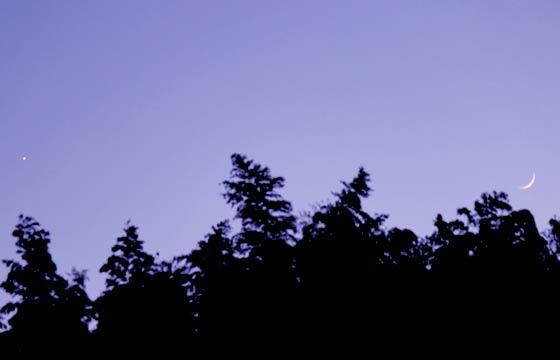 日没前でも見える金星