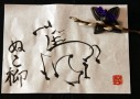 【草花遊び】猫柳(ネコヤナギ)の花を筆にしてみた