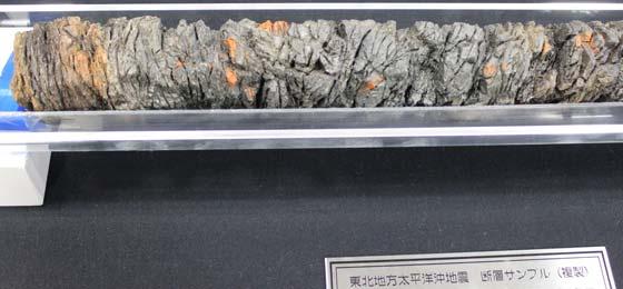 東日本大震災 宮城沖プレート模型