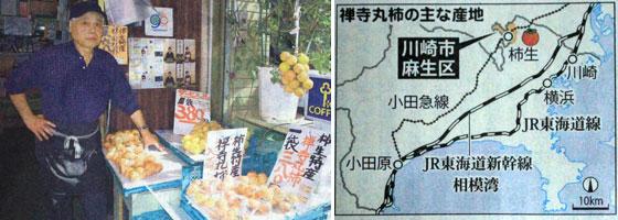 日本最古の柿 禅寺丸