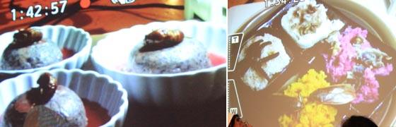 セミの抜け殻団子と蟲プレートご飯