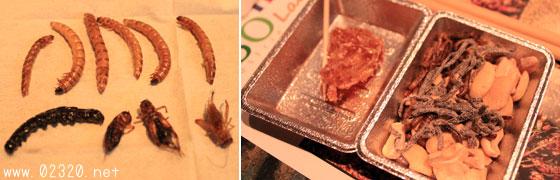 食用昆虫フライ盛り合わせ