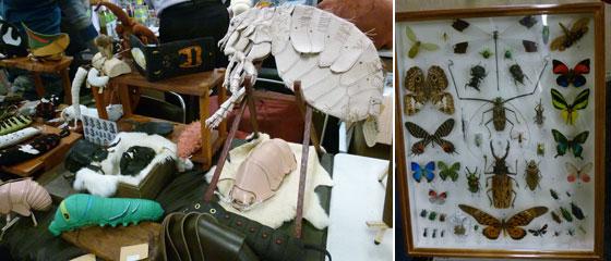 あまのじゃくとへそまがり革製品と昆虫標本