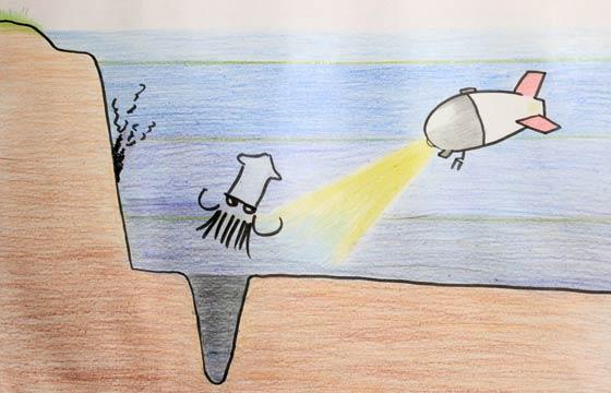 中深海・漸深海・深海層