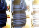 同じ色が違って見える『色の恒常性』