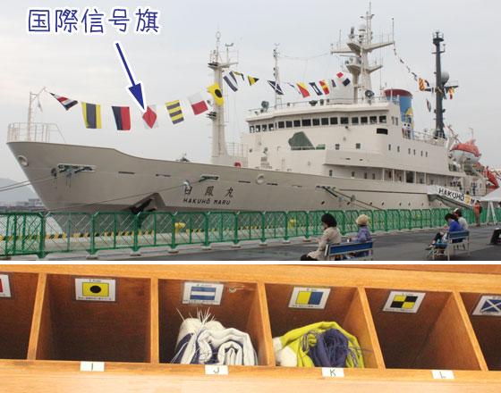 JAMSTEC白鳳丸