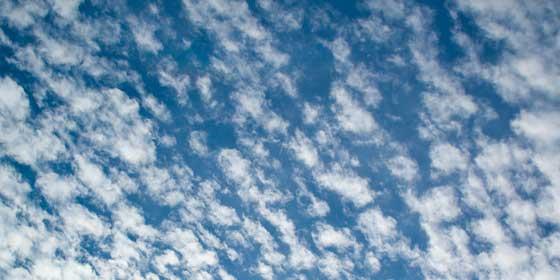 巻積雲・うろこ雲
