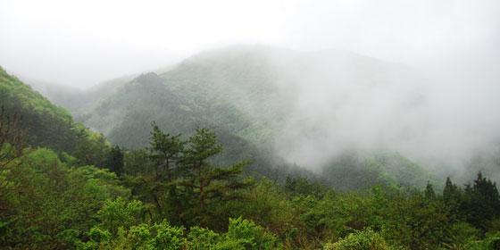 層雲・霧雲