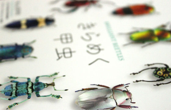 「きらめく甲虫」がきらめいて見える多分きっと本当の理由
