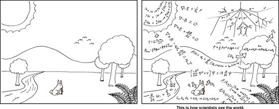 科学者が見ている世界