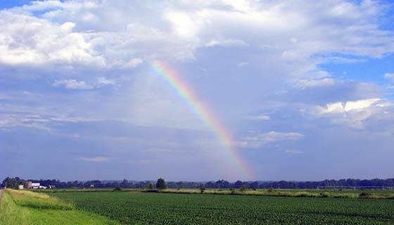 虹がよく見える季節は夏?それとも冬?見逃さないコツ教えます!