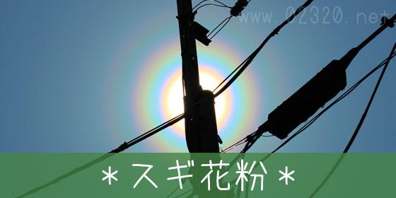 花粉光環って何?夕日の周りに丸い虹を見たらスギ花粉だと思え!