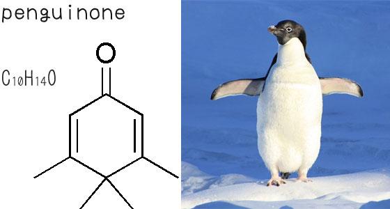 ペンギノン
