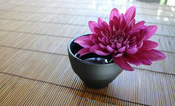 食用ではない普通の菊をおひたしにして食べる