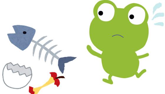 家庭用生ごみ処理機「自然にカエル」を無理に勧めない7つの理由