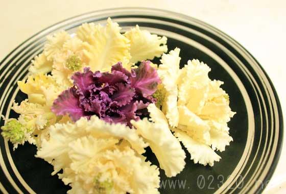 葉牡丹(ハボタン)は食べられるけどまずいって人は調理法が悪い