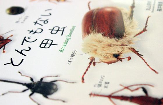 【書評】『とんでもない甲虫』をとことん楽しむアイデア集